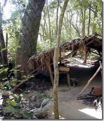Campement de Chiclero